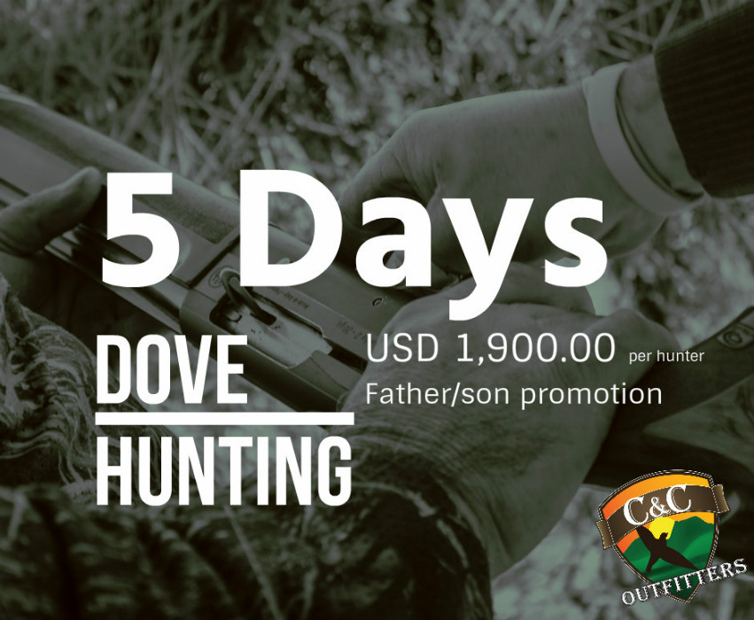 father&son argentina DOVE hunting package