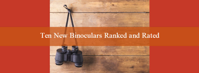 argentina dove hunting new-binoculars-ranked-and-rated